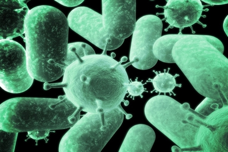 International effort needed against antimicrobial resistance